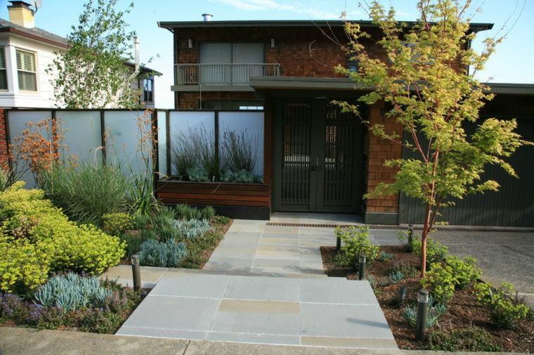 plantas macetas imagenes estilos clores senderos casas