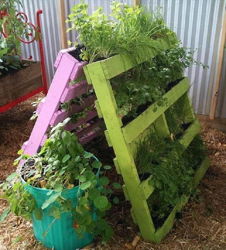plantas-pared-vertical-ideas