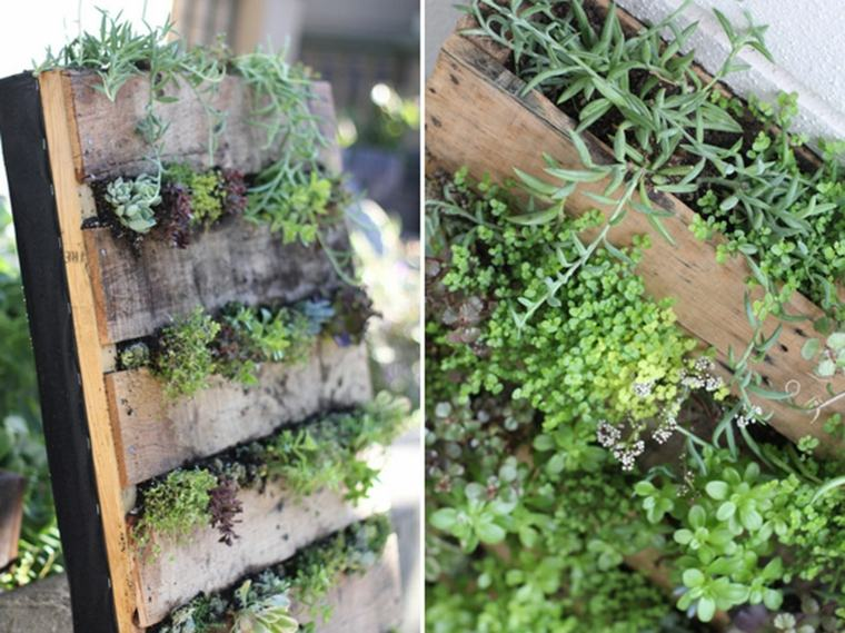 panel plantas