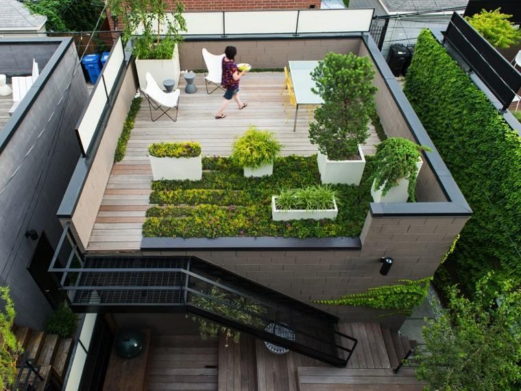 terraza plantas