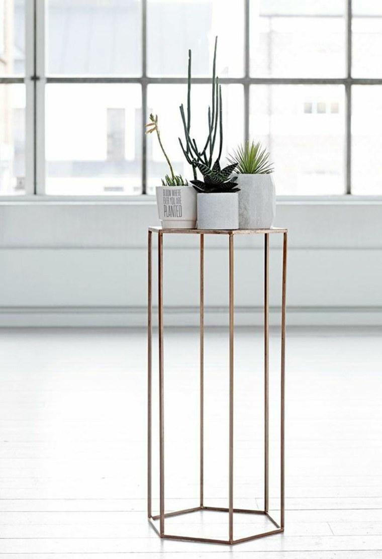 usando mesas mostrar plantas estilos ventanales