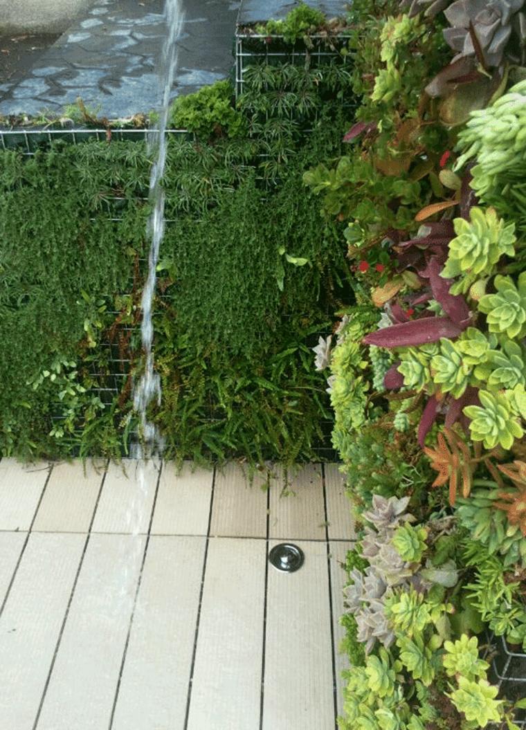 duchas de jardin plantas