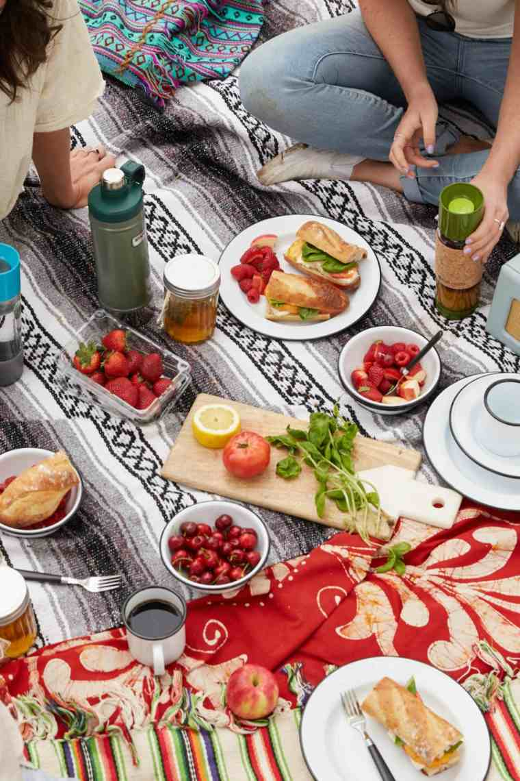 cómo hacer un picnic-diversion-verano