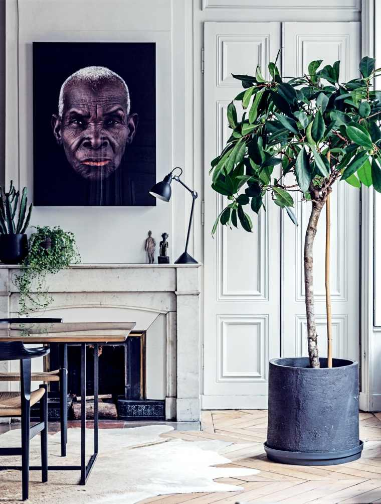decoracion-casa-plantas-opciones-originales