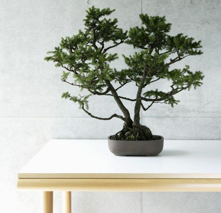 feng shui elemento-tierra-interiores