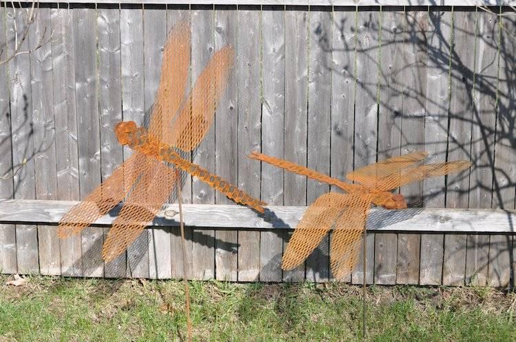 libelulas-patios-adyacentes-refugiados-muro