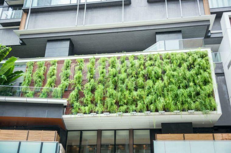 muros-diferentes-conceptos-verdes