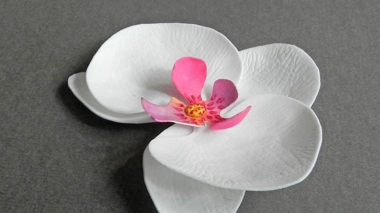 rosa-combinaciones-imagenes-salones