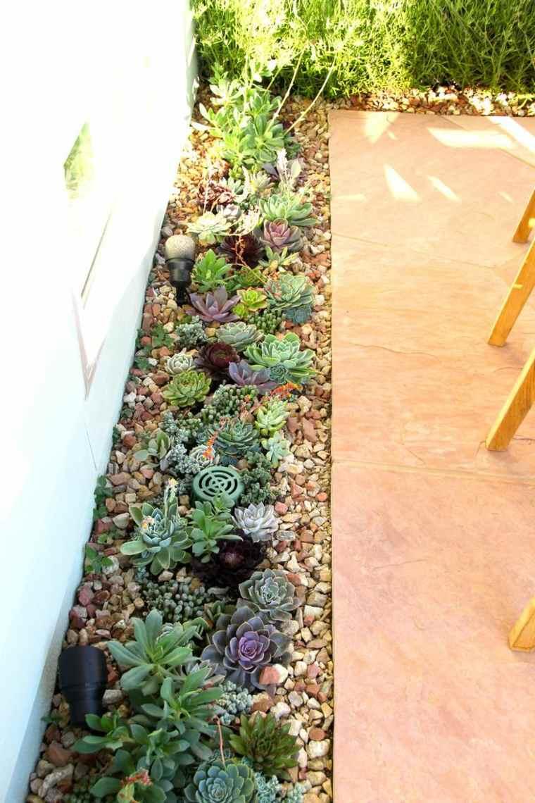 suculentas ideas influencias-verdes-casas