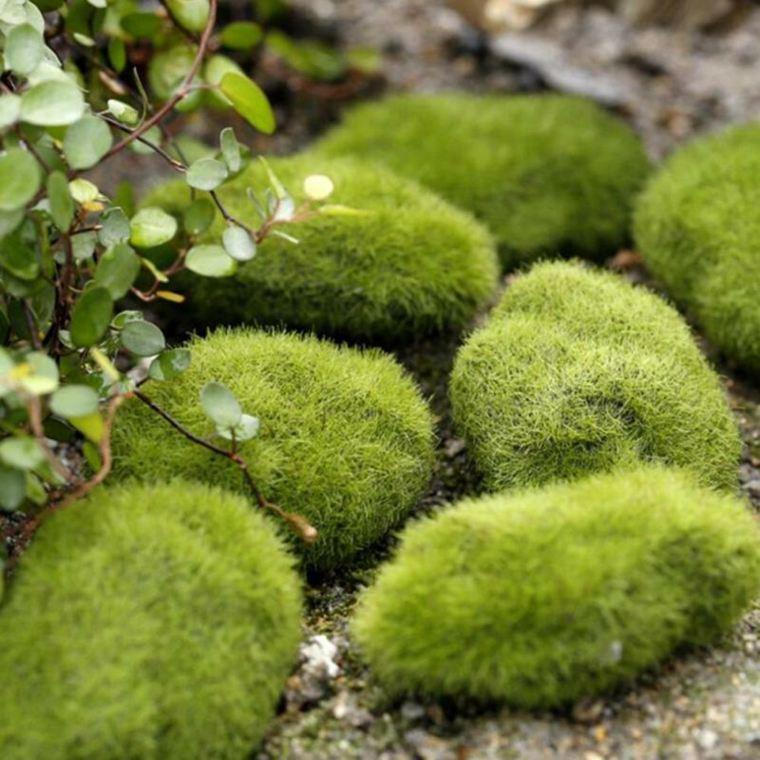 Ideas para decorar un jardin musgo