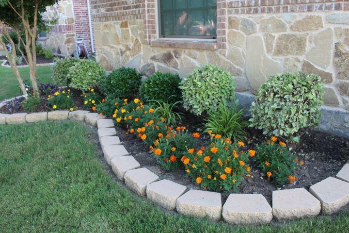 bordes conceptos jardines modernos