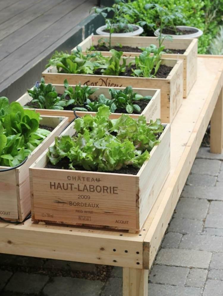 cajas madera nutrientes esenciales