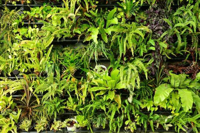 Jardines verticales espectaculares para interiores y for Verde vertical jardines verticales