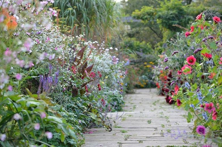 camino jardín