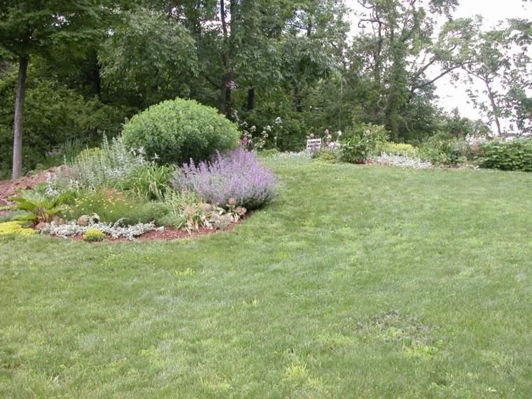 espacios-amplios-verdes-naturales-opciones-jardin-estilo