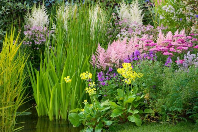 estanque flores