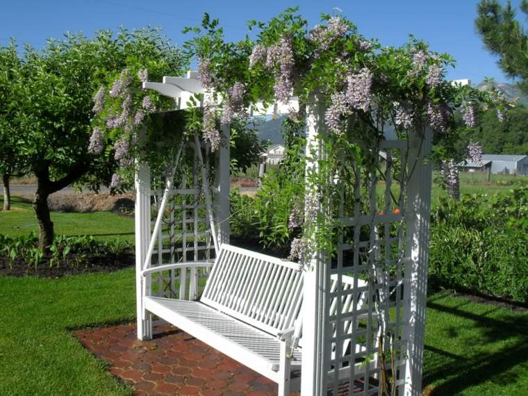 glicina planta-jardin-banco-color-blanco