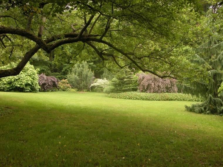 ideas para arreglar un jardin-amplio-cesped-estilo