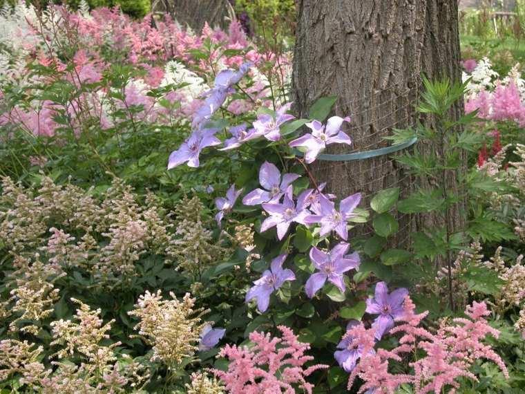 ideas para arreglar un jardín-flores-diseno-moderno