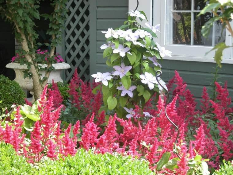ideas-para-arreglar-un-jardín-plantas-modernas