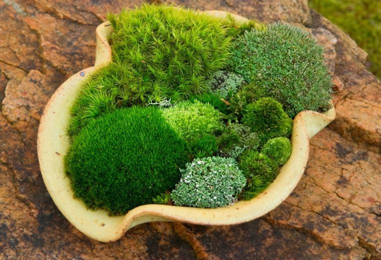 diseños de jardines con piedras y musgo