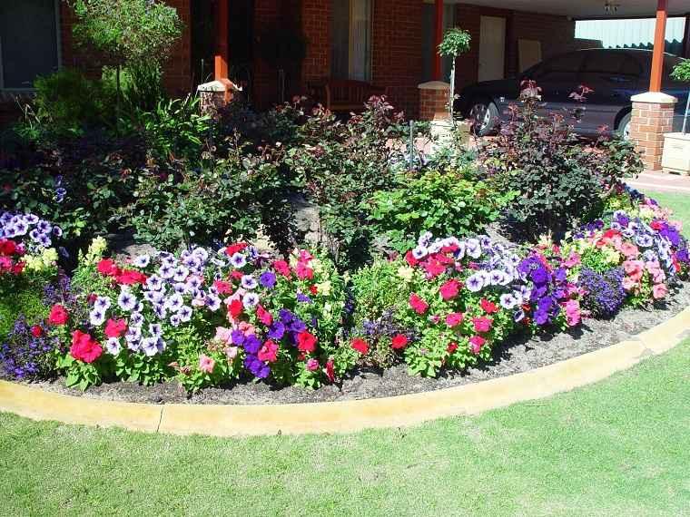 imagenes-de-flores-bonitas-cultivar-jardin
