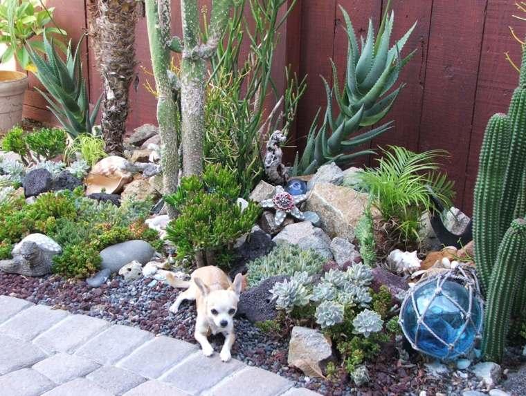 jardin-de-cactus-esferas-patios
