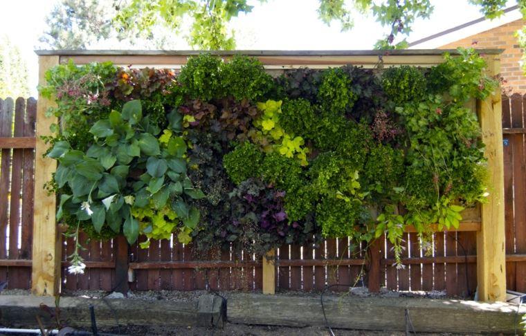 valla plantas