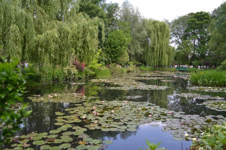 bonito estanque