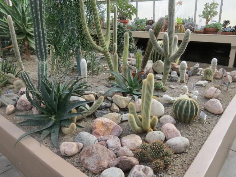 locaciones-plantas-medicinales-ideaa