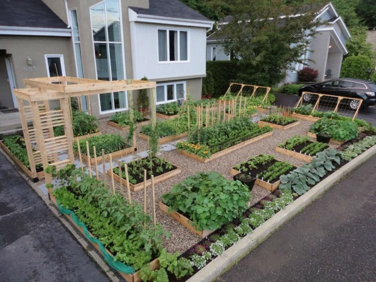 maderas vegetales sitios seguros