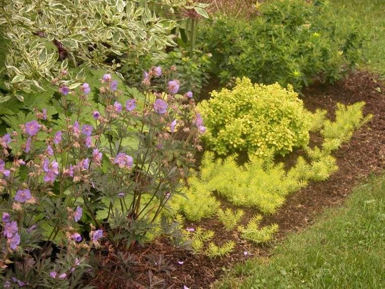 opciones-arreglar-diseno-jardin-estilo-moderno
