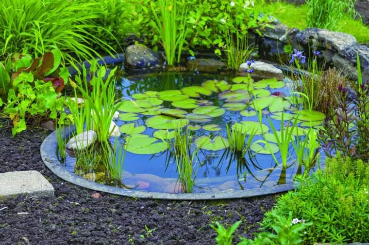 pequeño estanque