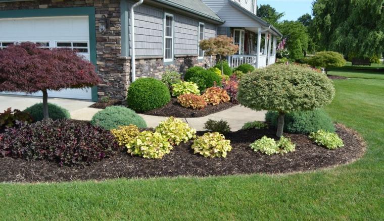 plantas-casa-jardin-cesped-ideas