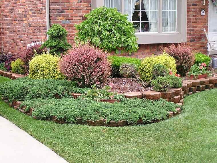 Plantas de jard n 6 arbustos y consejos sobre c mo cuidar de ellos - Arbustos de jardin ...