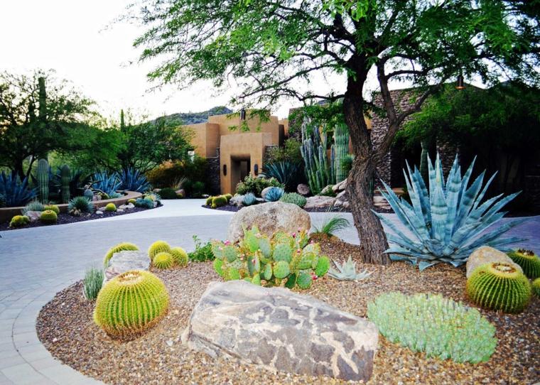 plantas-exteriores-oasis-perfecto-salas