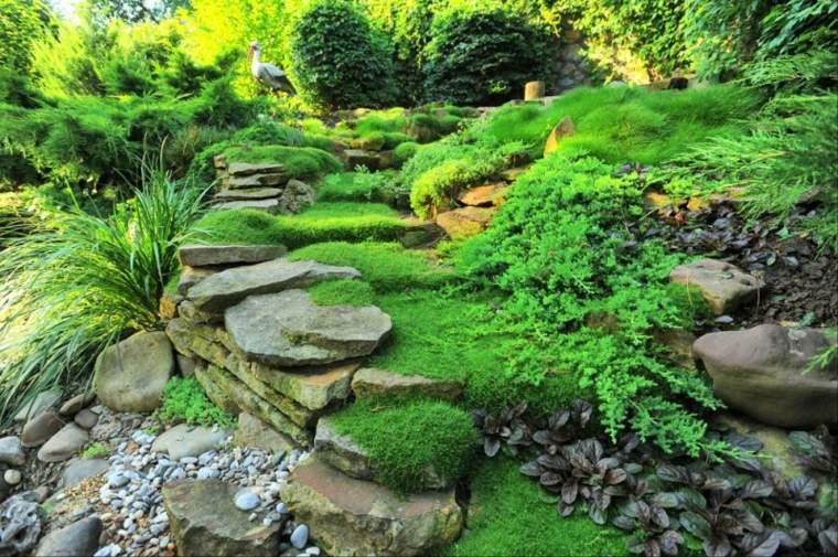 ideas para jardines con musgo