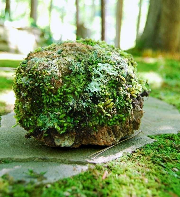 ideas para decorar un jardin con musgos y piedras