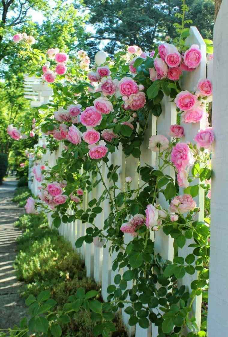 valla rosal