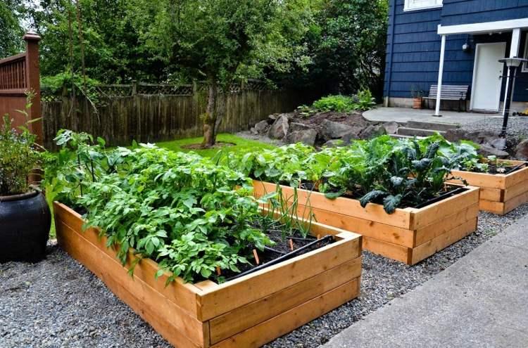 senderos plantas vegetales mansiones