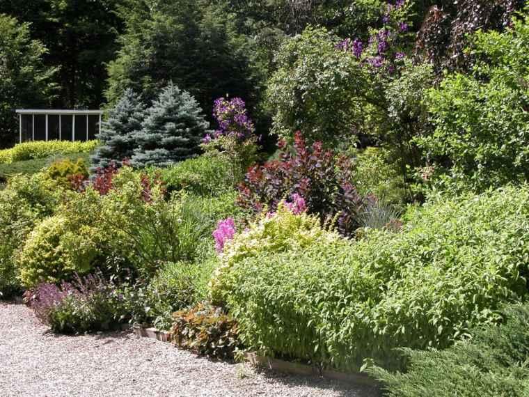suelo-piedras-plantas-jardin-opciones