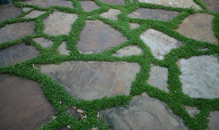 Ideas para decorar un jardin hermoso con piedra y musgo - Piedras suelo jardin ...