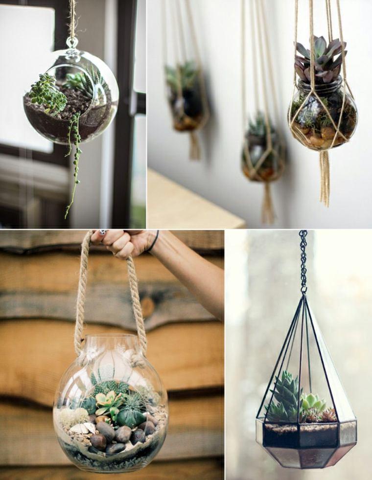 originales bolas colgantes con plantas