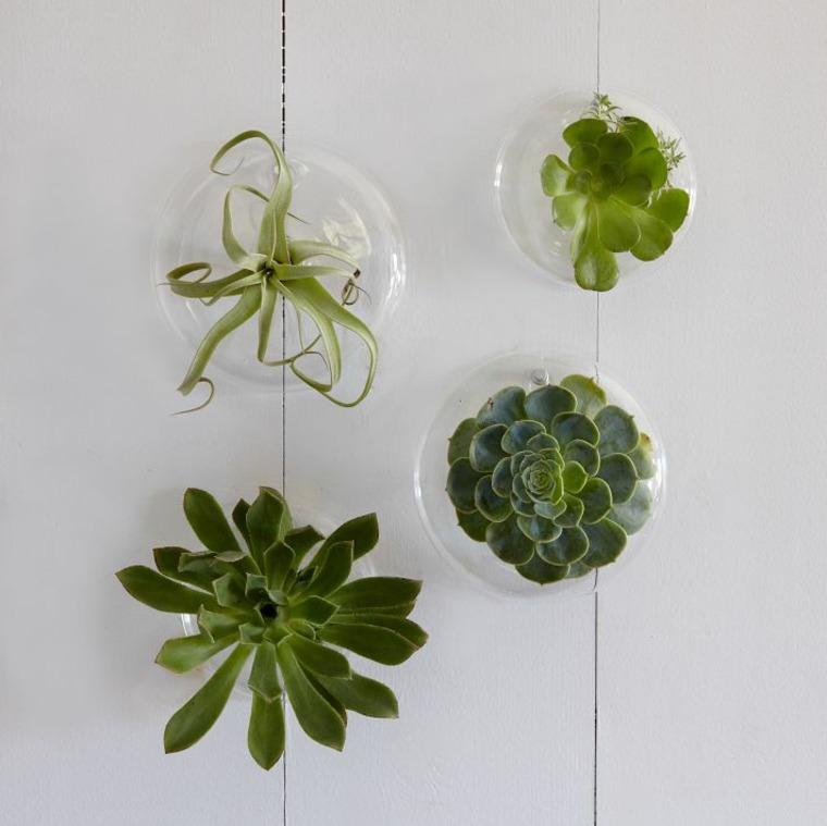 terrarios colgantes de vidrio