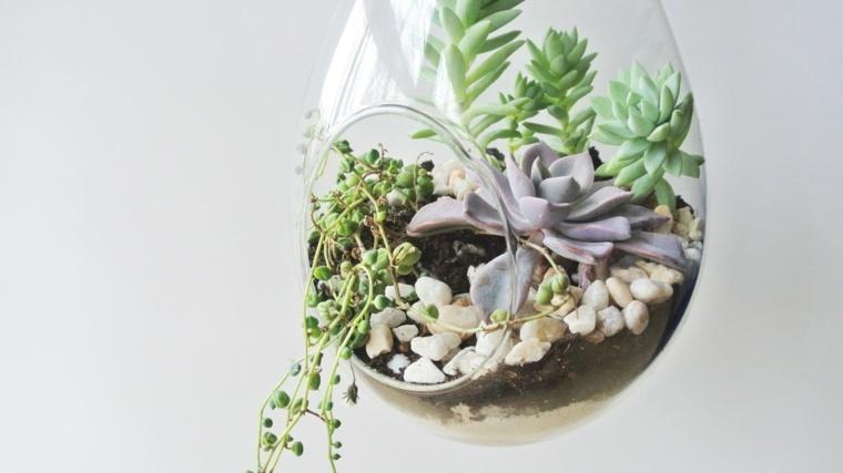 terrarios colgantes de vidrio con plantas