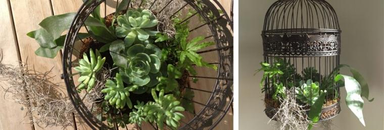 jaula vintage con plantas
