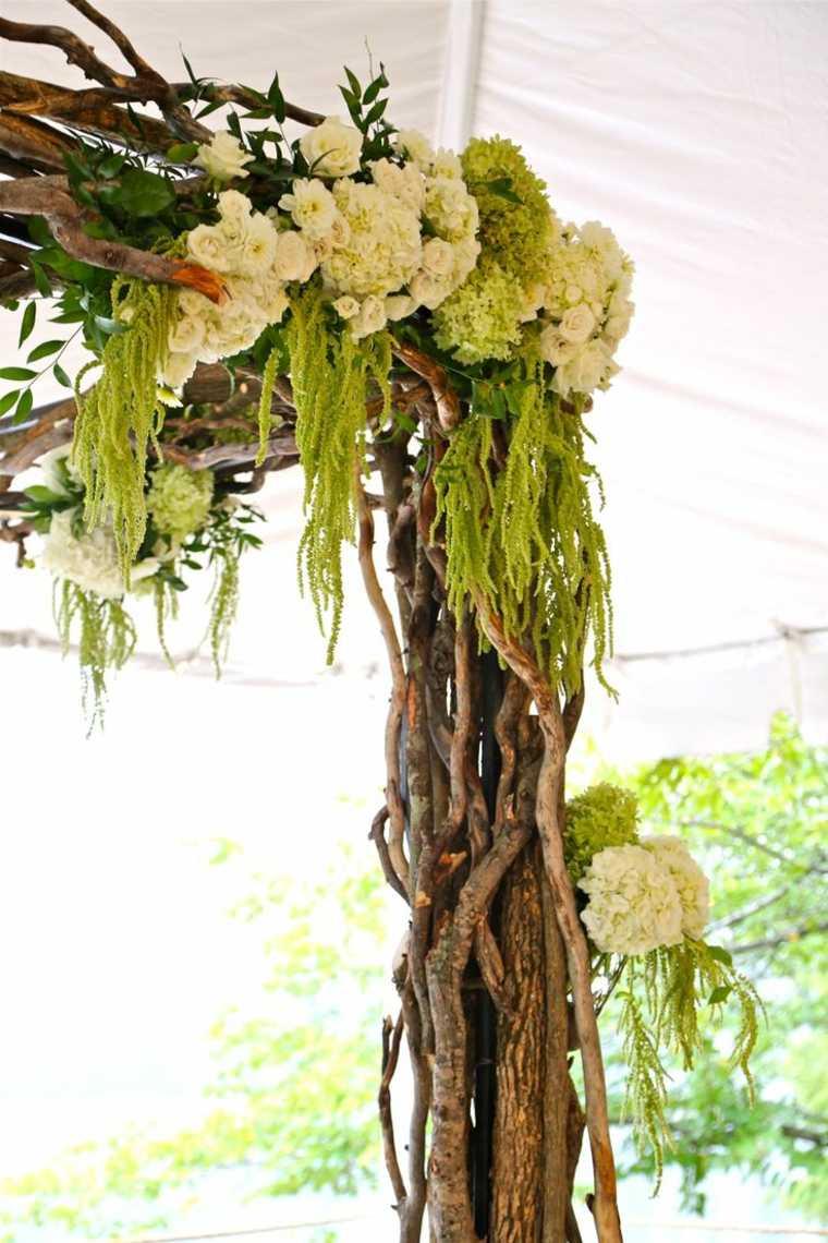ramas con plantas