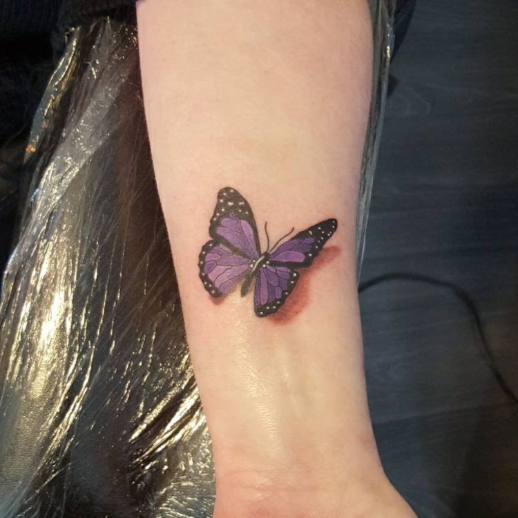 mariposa efecto tres de mans