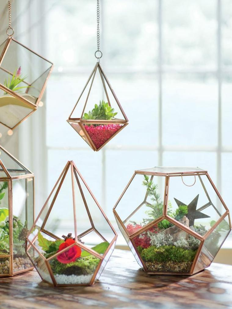 terrarios colgantes con plantas
