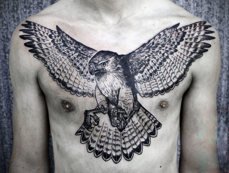 halcon alas extendidas sobre pecho